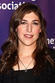 LOS ANGELES - MAR 20:  Mayim Bialik arrives at the 21st Annual A Night at Sardi's to Benefit the Alz