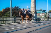 A mounted trooper of the Household Cavalry keep watch around the city of Bern