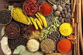 picture of fenugreek  - Spices and herbs on wooden background - JPG