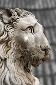 stock photo of genova  - Sculpture of a stone lion in cathedral of St - JPG