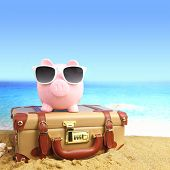 stock photo of piggy  - Suitcase with piggy bank in sunglasses on tropical beach - JPG