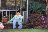 picture of scarecrow  - Scarecrow decorations for upcoming Halloween - JPG