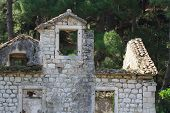 picture of house woods  - Old ruined stone house in the woods - JPG
