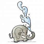 picture of squirting  - elephant squirting water cartoon - JPG