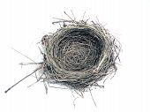 stock photo of bird-nest  - photo of a bird nest isolated over white background - JPG