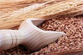 pic of deep-tissue  - Buckwheat groats with a wooden deep spoon for packaging - JPG
