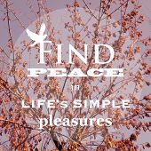 stock photo of peace  - Inspirational Life Quote Background Design  - JPG