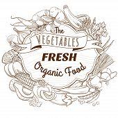 foto of outline  - Vector illustration Outline hand drawn sketch vegetable wooden frame flat style - JPG