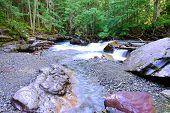 foto of avalanche  - stream along the Avalanche lake trail in Glacier National Park - JPG