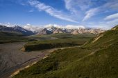 stock photo of denali national park  - A photograph of Denali National Park - JPG