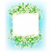 pic of flower shop  - Vector card with small white flowers on shining sky blue background - JPG