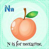 stock photo of letter n  - Flashcard letter N is for nectarine - JPG