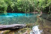 stock photo of emerald  - Emerald blue natural pool lagoon Krabi south of Thailand - JPG