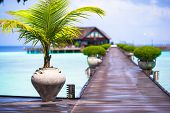 picture of jetties  - Beautiful tropical view of perfect ideal island - JPG