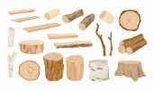 Collection Of Wooden Logs, Tree Branches, Lumbers, Timber Sawn Into Rough Planks Isolated On White B poster