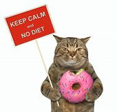 The Cat Holds A Funny Sign  Keep Calm And No Diet  And A Big Bitten Pink Donut. White Background. poster