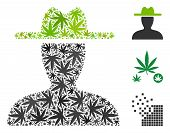 Farmer Collage Of Cannabis Leaves In Various Sizes And Color Tinges. Vector Flat Cannabis Objects Ar poster