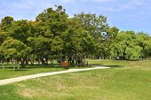 Pathway Through City Park In Summer.  Scenic View Of Public Park With Chess Board Tables. Picnic Are poster