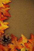 picture of fall leaves  - Fall leaves with pine cone on brown background fall border - JPG