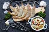 pic of tiger prawn  - Shrimp - JPG