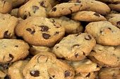 stock photo of chocolate-chip  - chocolate chip cookies - JPG
