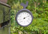 image of barometer  - Barometer in a garden or allotment with green foliage background - JPG