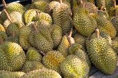 foto of south east asia  - Durian the world
