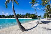 foto of french polynesia  - Beautiful beach on Bora Bora island in French Polynesia - JPG