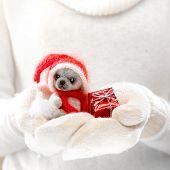 stock photo of cute bears  - Female hands holding a cute teddy bear - JPG