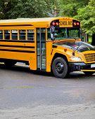image of driving school  - Yellow school bus driving along street - JPG