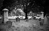 picture of tombstone  - Tombstone and graves in an ancient church graveyard - JPG