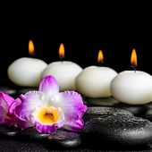 picture of zen  - spa still life of purple orchid dendrobium with dew and row white candles on black zen stones closeup - JPG