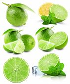 stock photo of lime  - set of limes isolated on the white background - JPG