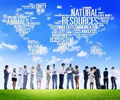 image of natural resources  - Natural Resources Environmental Conservation Sustainability Concept - JPG
