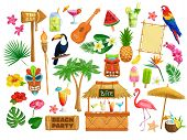 Vector Hawaiian Beach Party Icons. Tiki Tribal Mask, Wooden Signboard, Tropical Birds, Cocktails, Wa poster
