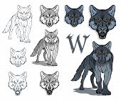 Wolf Set, Isolated On White Background, Colour Illustration, Suitable As Logo Or Team Mascot. Danger poster
