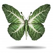 Vegan Green Leaves Symbol And Veganism Or Vegetarian Concept As A Plant Based Vegetable Regimen Diet poster