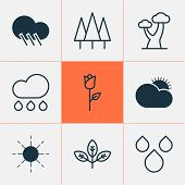 Ecology Icons Set With Big Tree, Raindrop, Clear Sunrise And Other Love Flower Elements. Isolated Ve poster