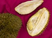 Tropical Fruit Durian On Red Background. Whole And Cut Durian Flat Lay. Tasty Fruit With Smell. Exot poster