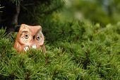 pic of screech-owl  - toy owl in a tree with copy space - JPG