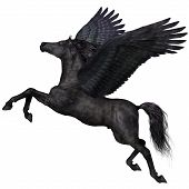picture of pegasus  - A magical black Pegasus spreads its wings and flies up into the sky - JPG