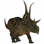 stock photo of herbivores  - Diabloceratops is a newly discovered herbivore dinosaur from Utah  - JPG