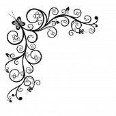 pic of white flower  - Floral black and white corner design element - JPG
