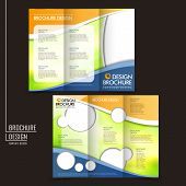 picture of brochure  - template of business brochure design with spread pages - JPG