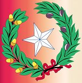 stock photo of texas star  - The laurel leaf and star from the seal of the state of TEXAS - JPG