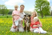 foto of shepherd dog  - A happy family of four people mother father young child and toddler are sitting in a meadow of Dandelion flowers with their German Shepherd mix dog on a beautiful Spring day - JPG