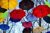 pic of vivid  - Bright umbrellas. Bright, Vivid Colors. Freedom concept ** Note: Shallow depth of field - JPG