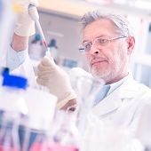 picture of microorganisms  - Life scientist researching in laboratory - JPG