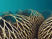 image of undersea  - Undersea scenery with 3D wood render - JPG