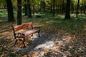 picture of banquette  - wooden bench in the park in the sunlight - JPG